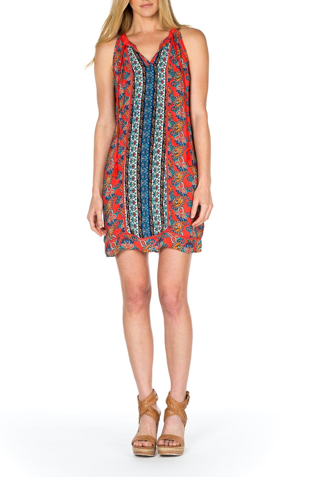 Tolani Savannah Silk Dress - Main Image