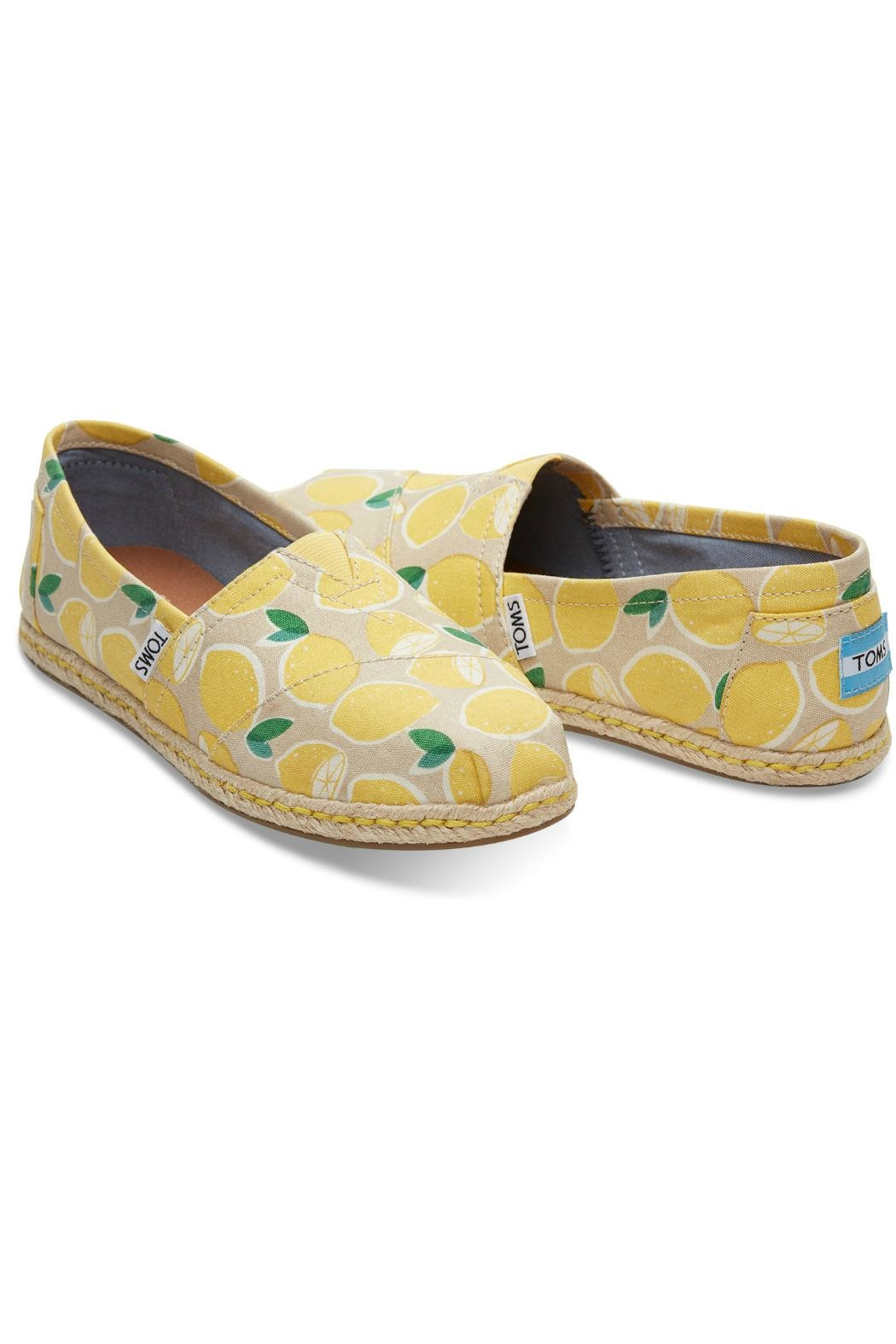 TOMS Blue Aster Shoes - Front Full Image