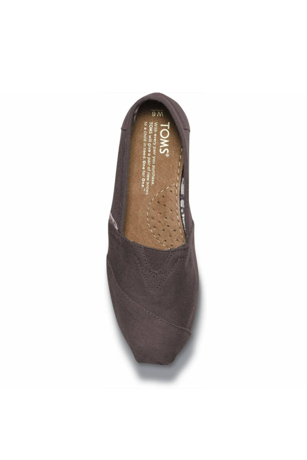 TOMS Grey Canvas Alpergata Shoes - Side Cropped Image