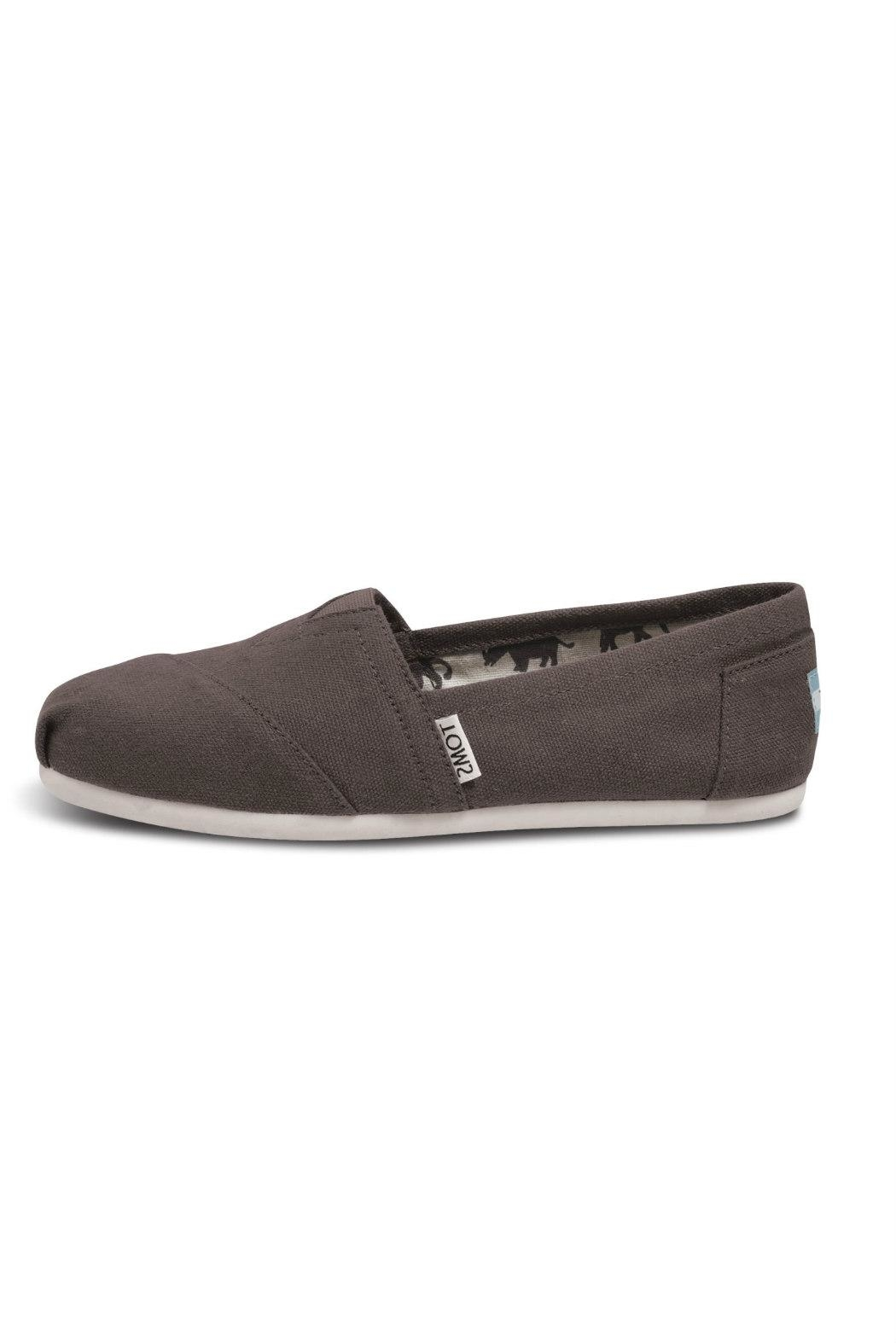 TOMS Grey Canvas Alpergata Shoes - Front Cropped Image