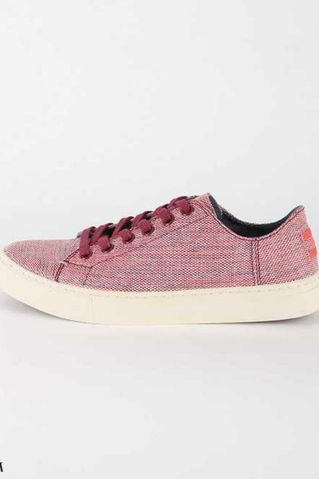 TOMS Lenox Sneaker Pomegranate - Front Cropped Image