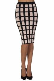 Torn by Ronny Kobo Caged Grid Skirt - Product Mini Image