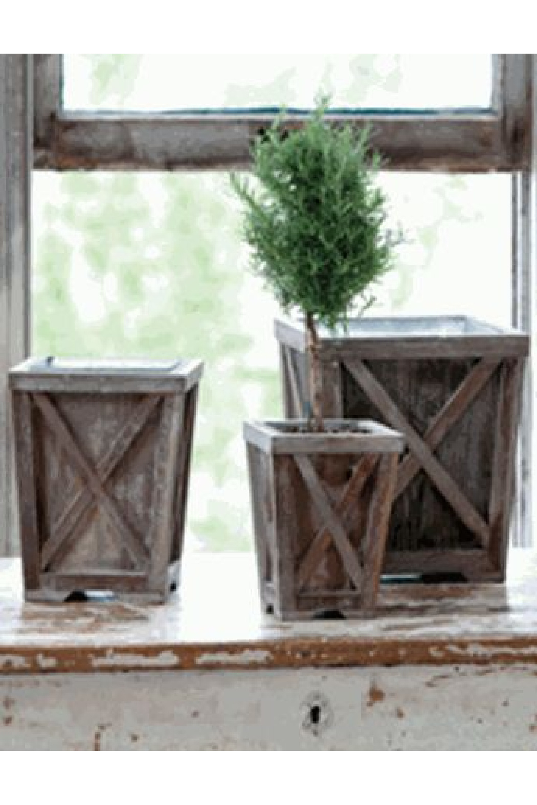 The Birch Tree Town & Country Planter Set - Main Image
