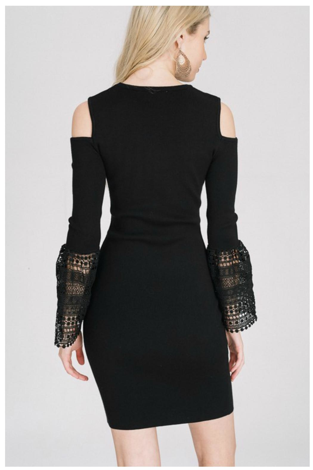Towne Crochet Sleeve Dress - Side Cropped Image