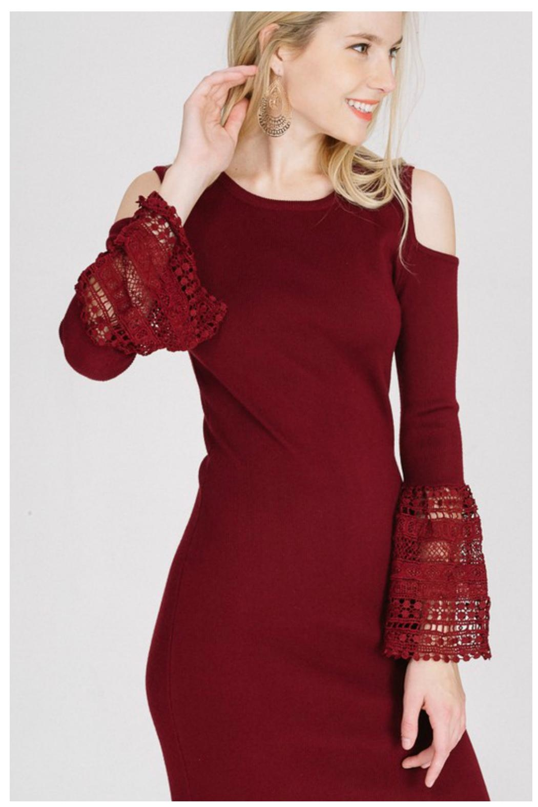 Towne Crochet Sleeve Dress - Front Cropped Image