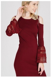Towne Crochet Sleeve Dress - Front cropped