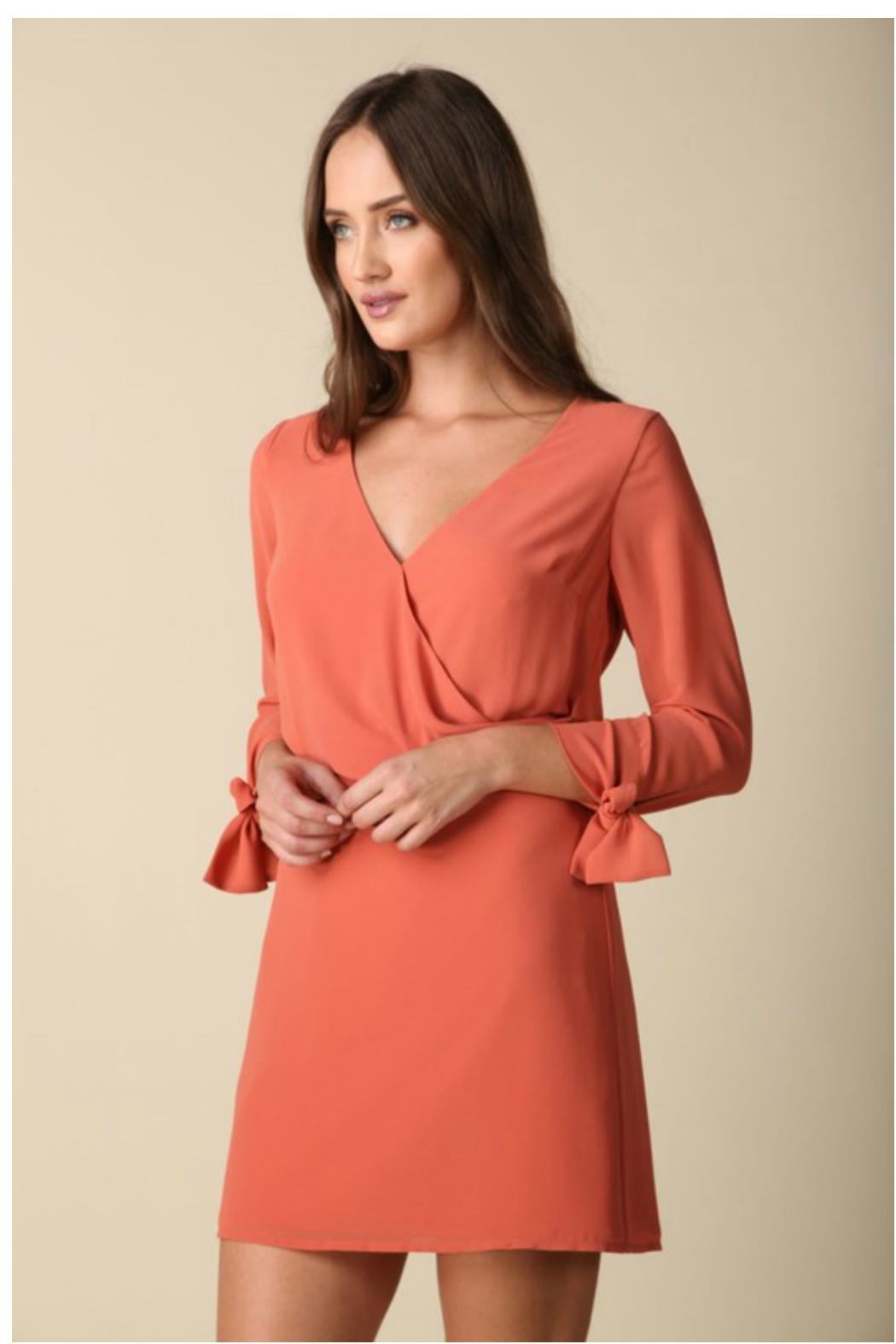 Towne Tie Sleeve Dress - Front Cropped Image