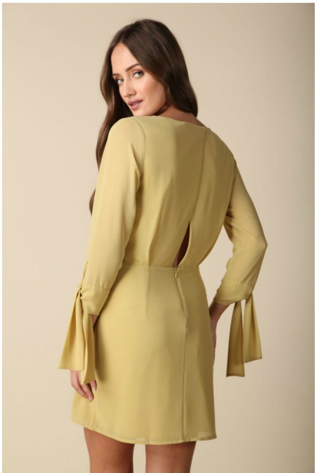 Towne Tie Sleeve Dress - Front Full Image