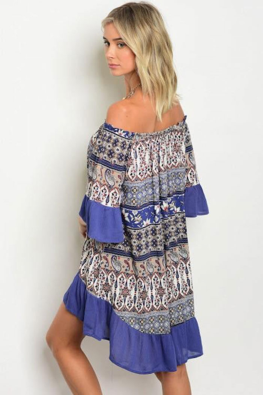 Tracie's Multi-Color Blue Ruffle Dress - Back Cropped Image