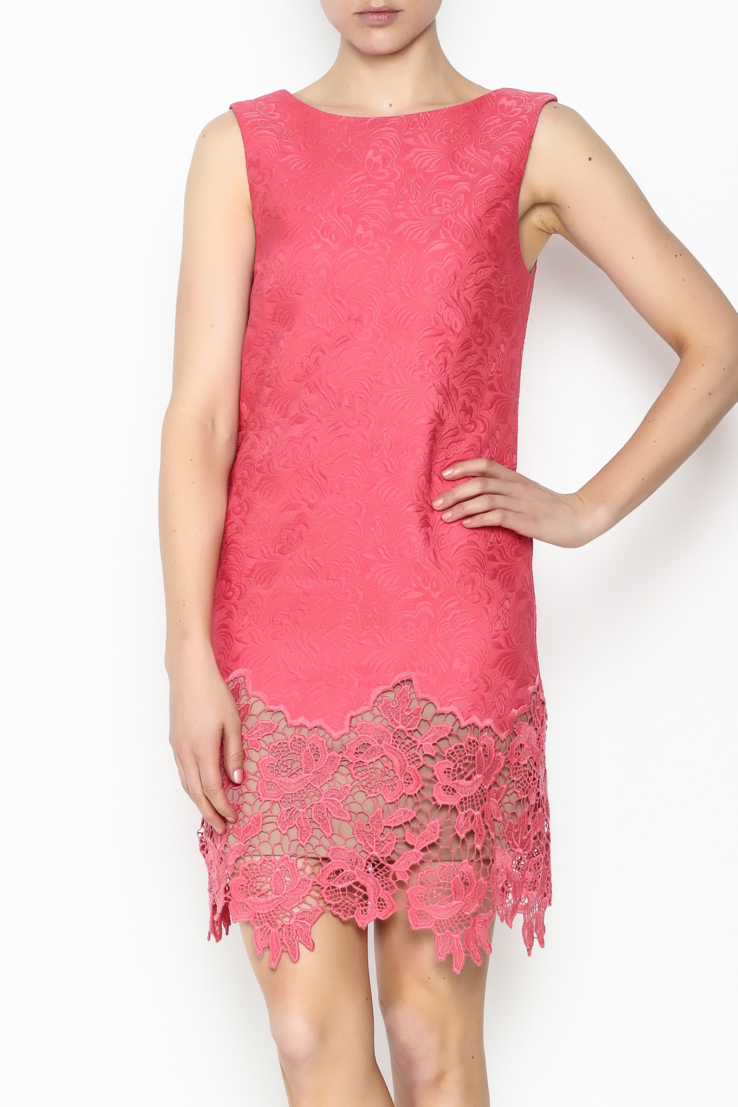 Tracy Reese Ella Lace Sheath Dress - Front Cropped Image
