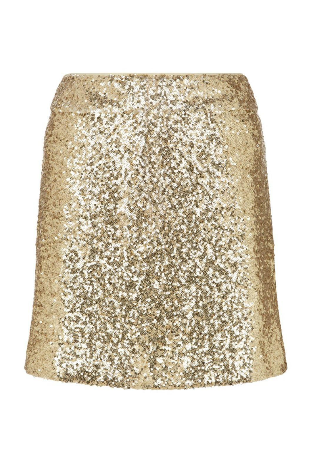 Traffic People Gold Sparkle Skirt - Front Cropped Image