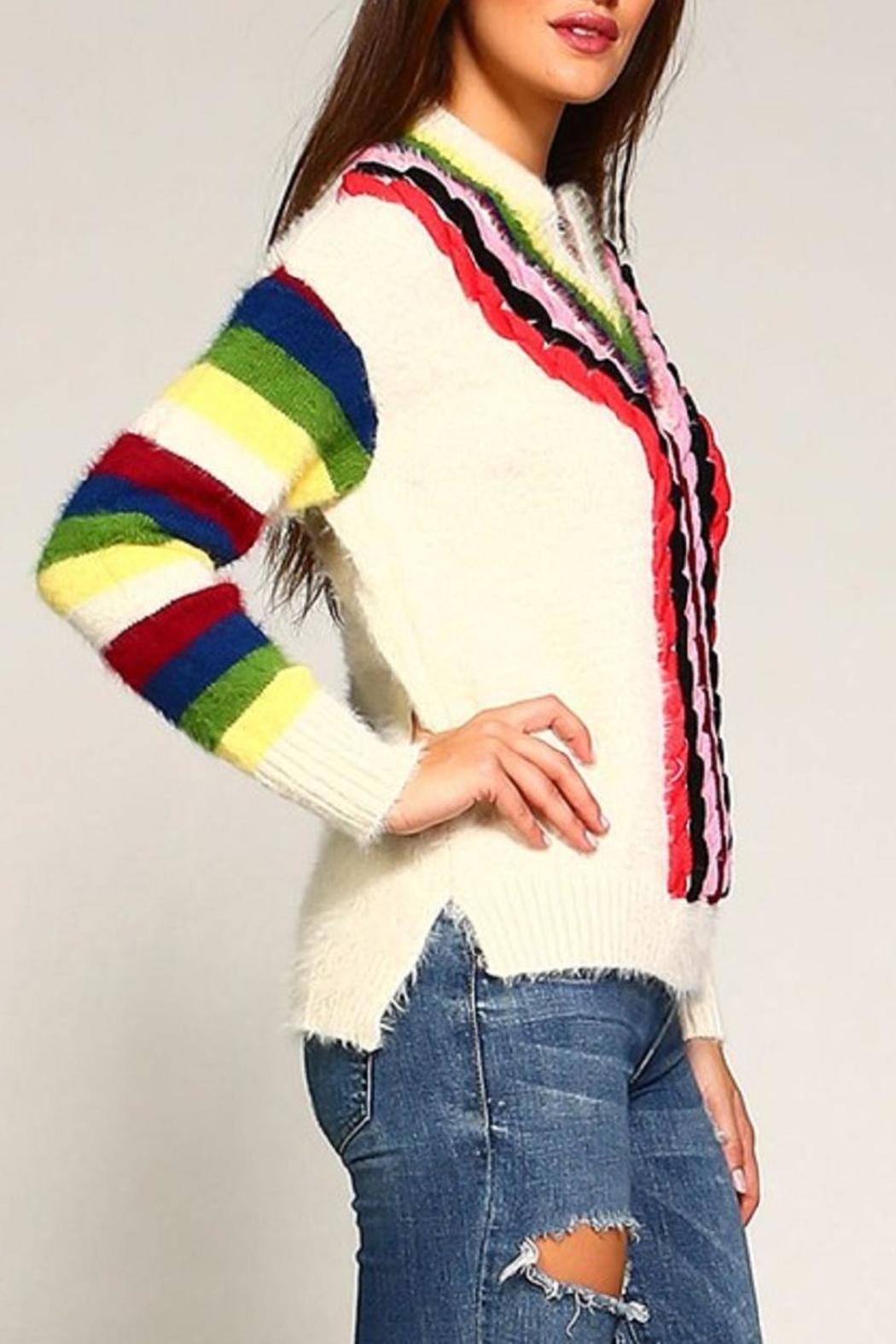 Trendology Multi-Color Furry Sweater - Front Full Image