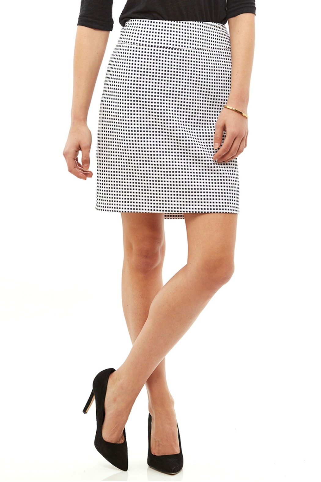 Tribal Navy White Check Skirt - Front Cropped Image