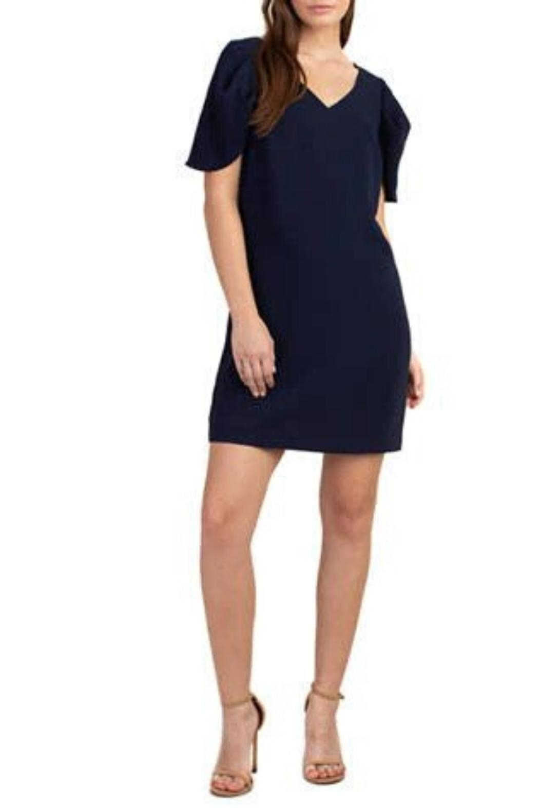 Trina by Trina Turk Cape Sleeve Dress - Front Cropped Image