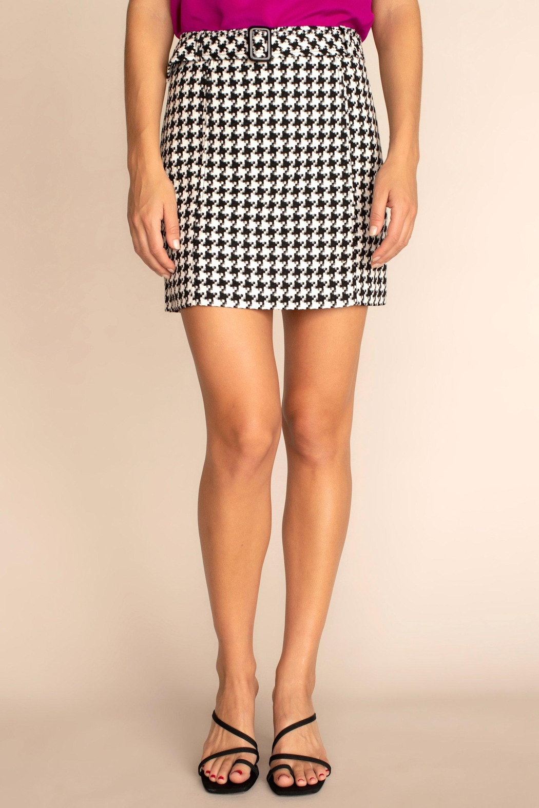 Trina Turk Lariat Skirt - Front Cropped Image