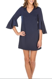 Jade Trumpet Sleeve Dress - Front cropped