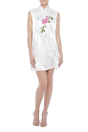 tu-anh boutique Mandarin Mini Dress - Front full body