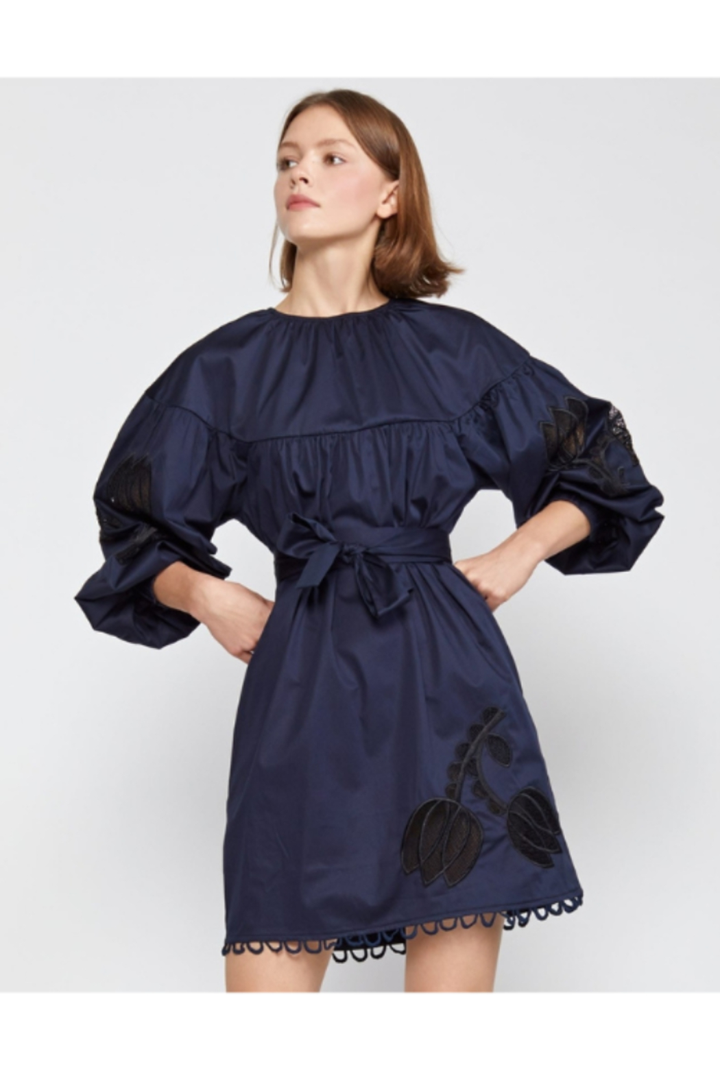 Cynthia Rowley Tulip Lace Embroidered Dress - Side Cropped Image