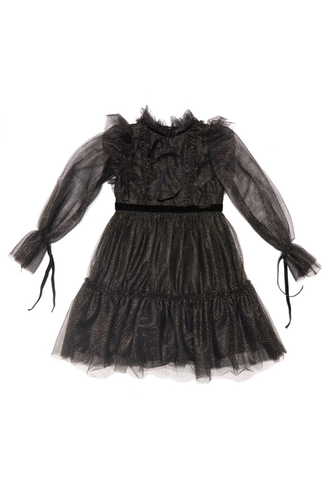 Alberta Ferretti Tulle Dress - Front Cropped Image