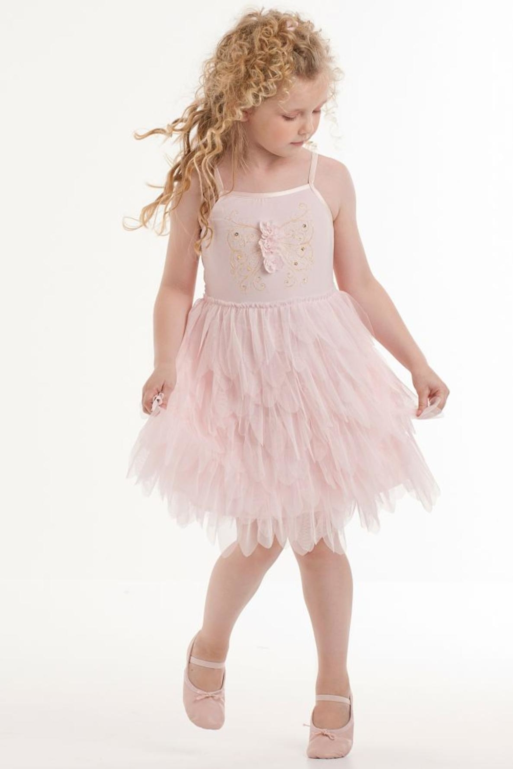 Biscotti Tulle Petals Dress - Main Image