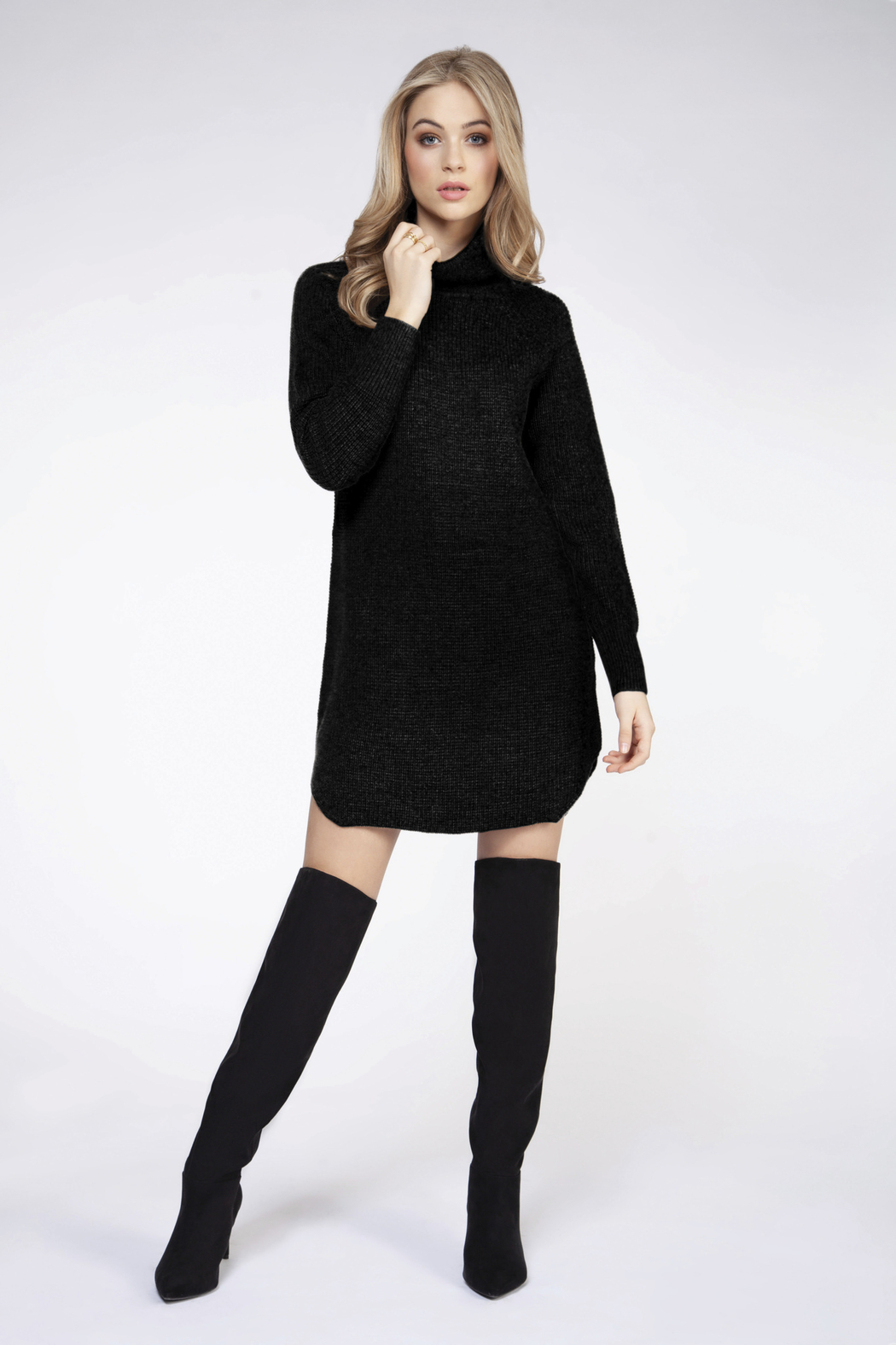 Dex Turtleneck Sweater Dress - Front Cropped Image