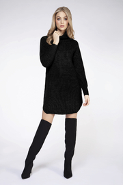 Dex Turtleneck Sweater Dress - Front cropped