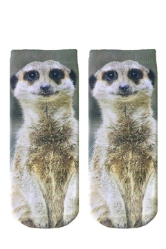 Shoptiques Product: Meerly Meerkat Socks