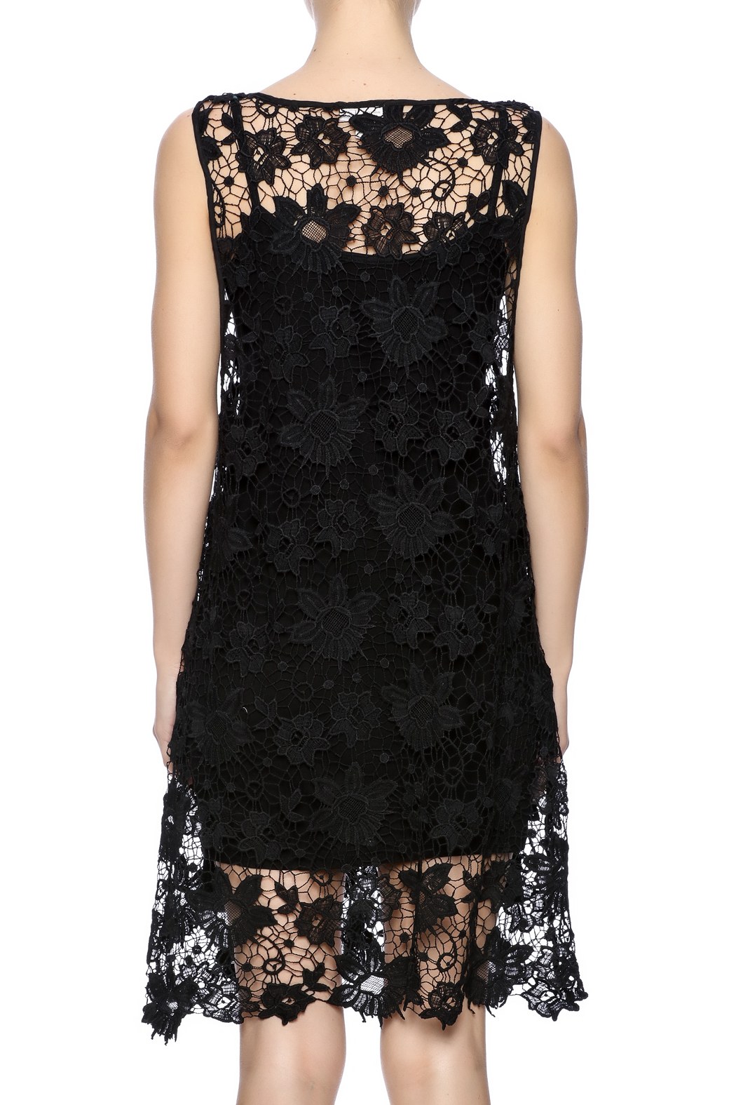 Two Chic Luxe Lace Lined Dress - Back Cropped Image