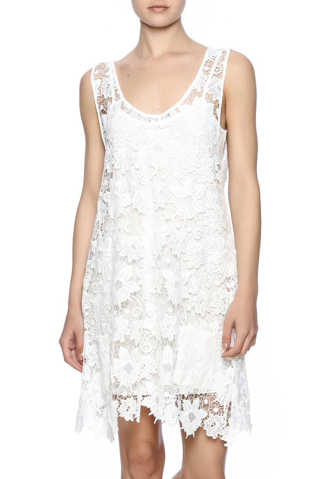 Two Chic Luxe Lace Lined Dress - Main Image