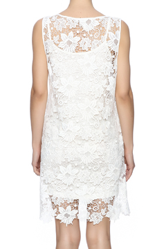Two Chic Luxe Lace Lined Dress - Alternate List Image