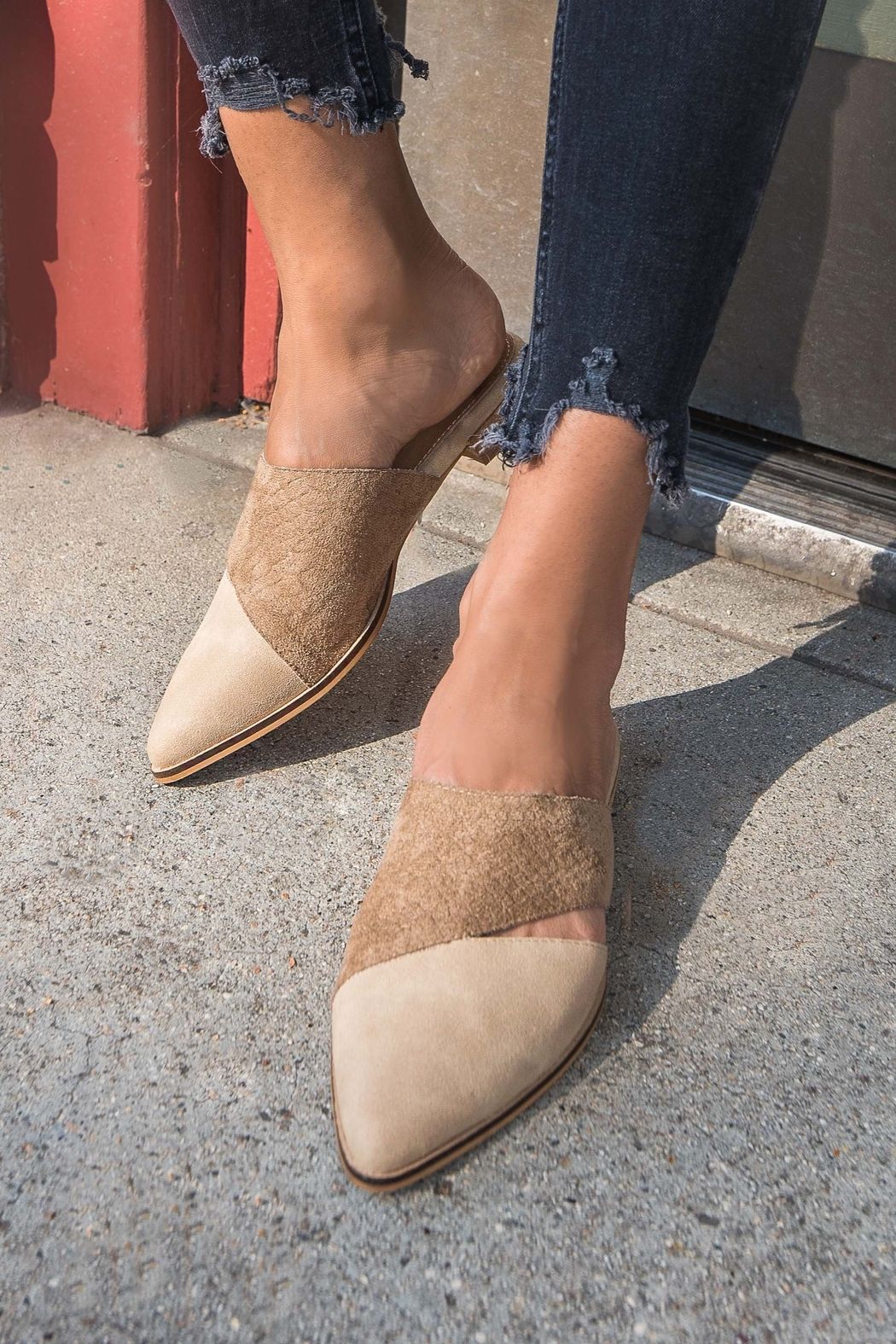 MiiM Two-Toned Pointed Mule - Main Image