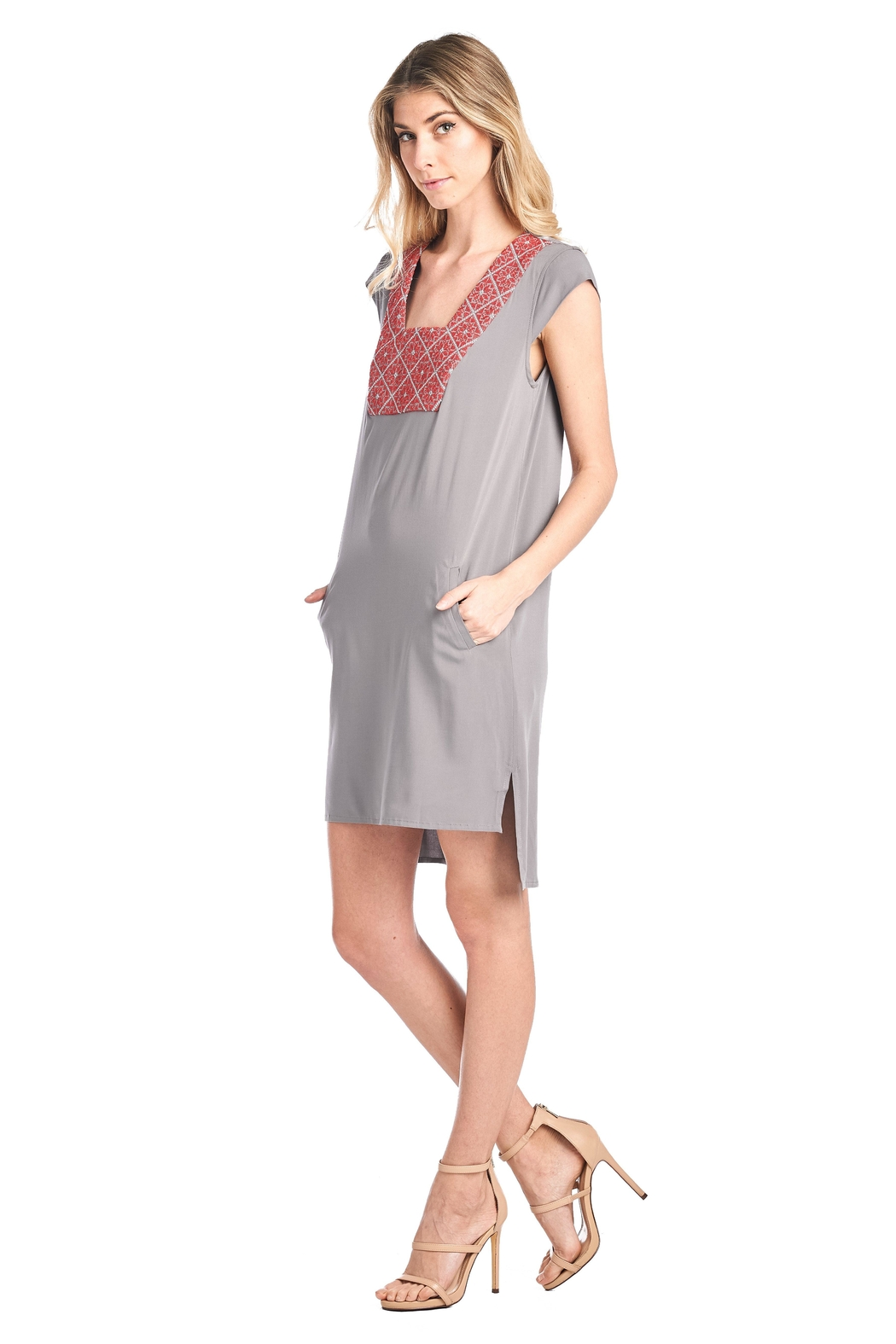 Two Neighbors Ayala Shift Dress - Front Full Image