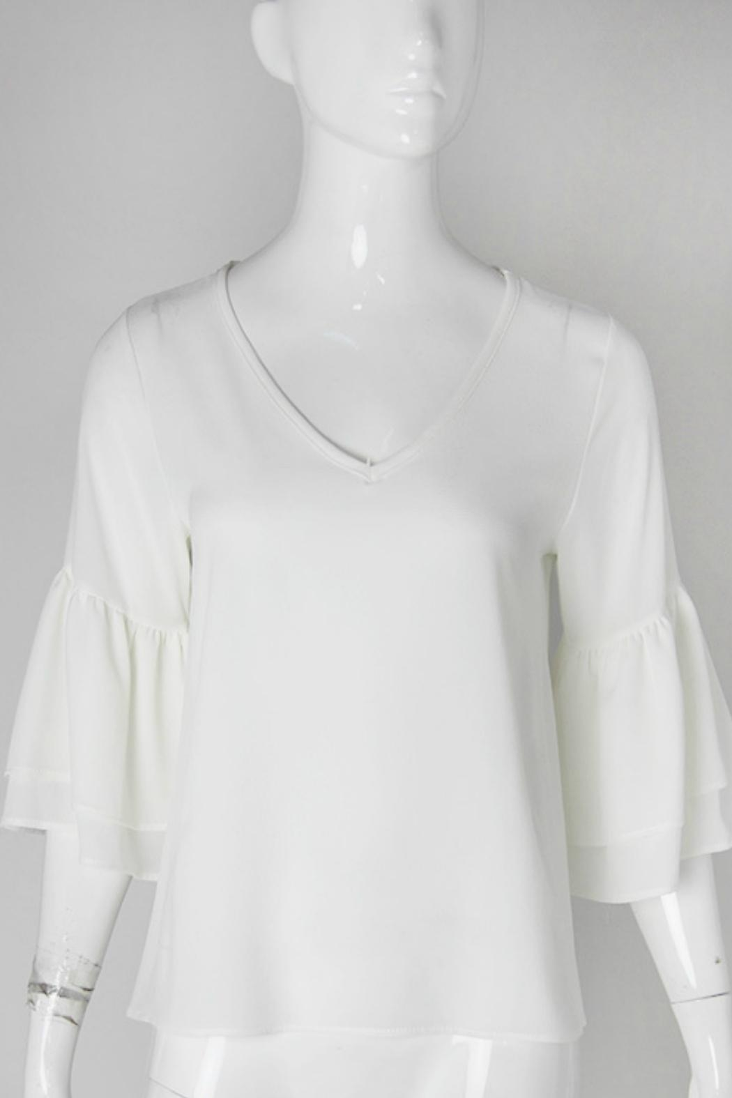 Tyche Ruffle Sleeve Top - Front Cropped Image