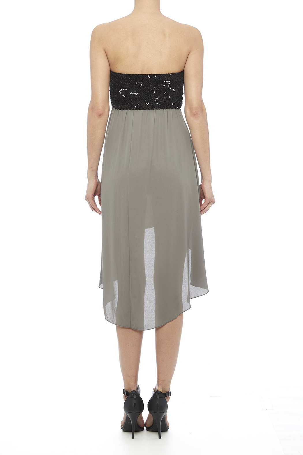 Tyche Sequin Bodice Dress - Back Cropped Image