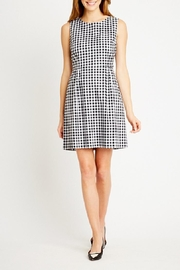 Tyler Boe Claire Gingham Dress - Side cropped