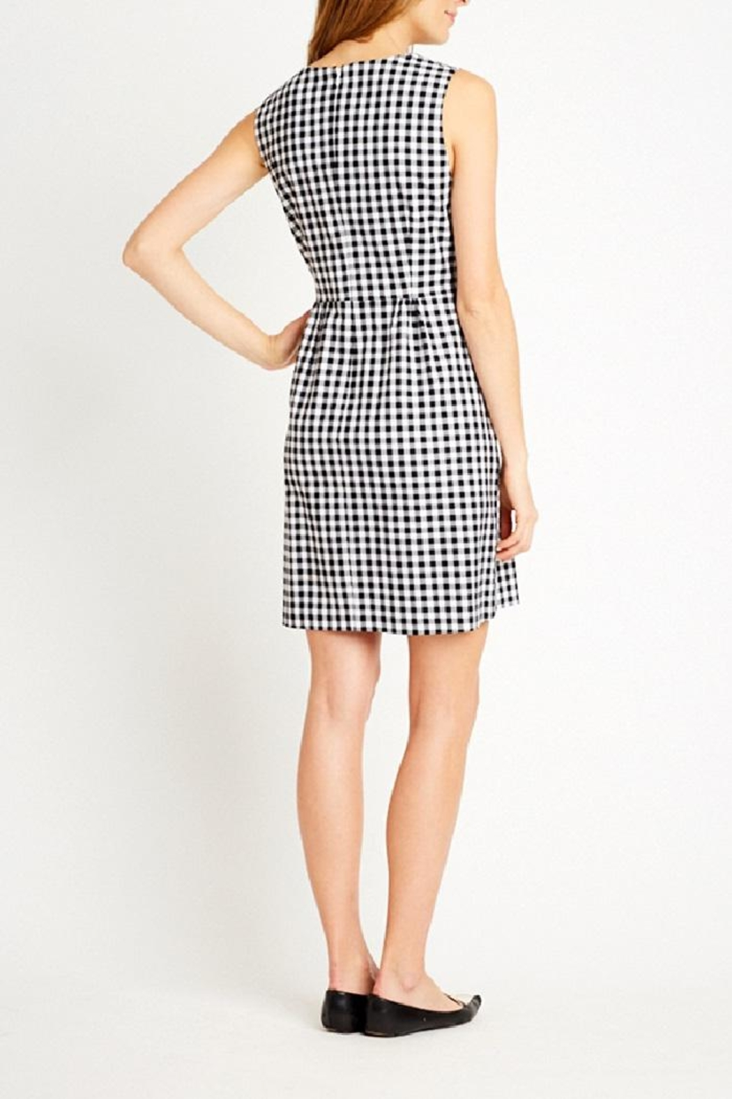 Tyler Boe Claire Gingham Dress - Front Full Image