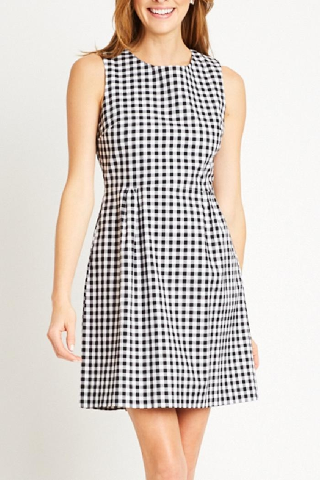 Tyler Boe Claire Gingham Dress - Main Image