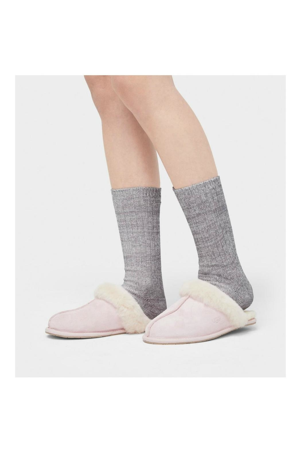Ugg Crew Sock - Front Full Image