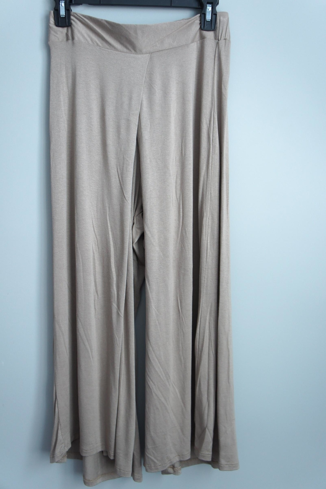 Uj Pleated-Front Gaucho Pants - Front Full Image