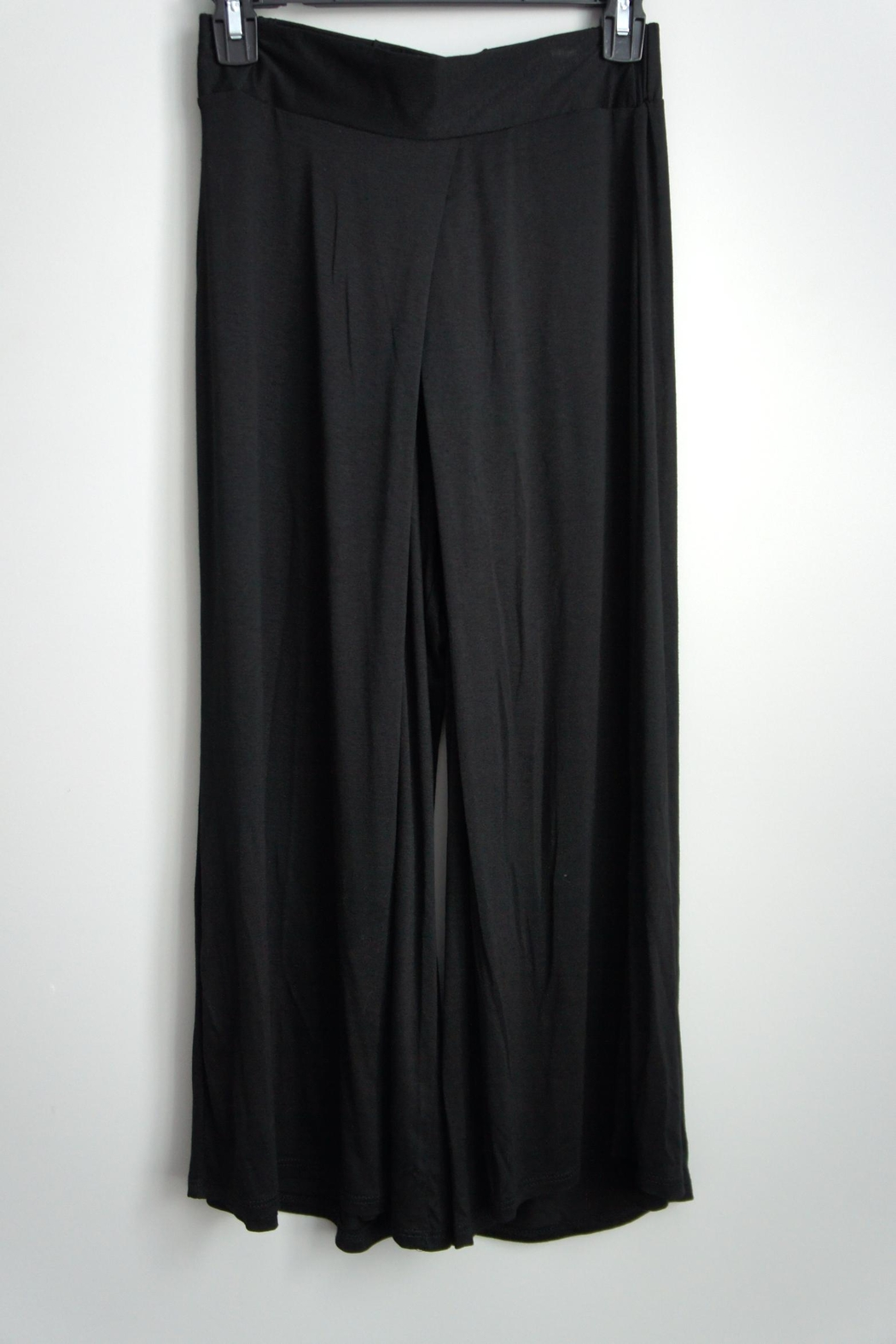 Uj Pleated-Front Gaucho Pants - Front Cropped Image