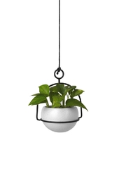 Umbra Nesta Planter - Front full body