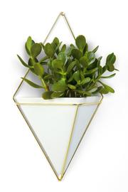 Umbra Trigg Wall Vessel - Product Mini Image