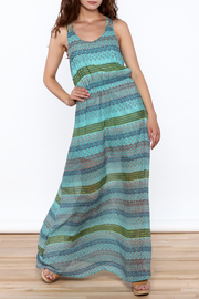 Umgee USA Anne Sleeveless Maxi Dress - Product Mini Image