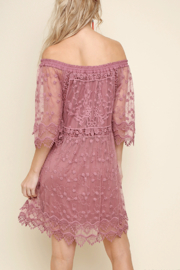 Umgee USA Lace Off Shoulder Dress - Back cropped