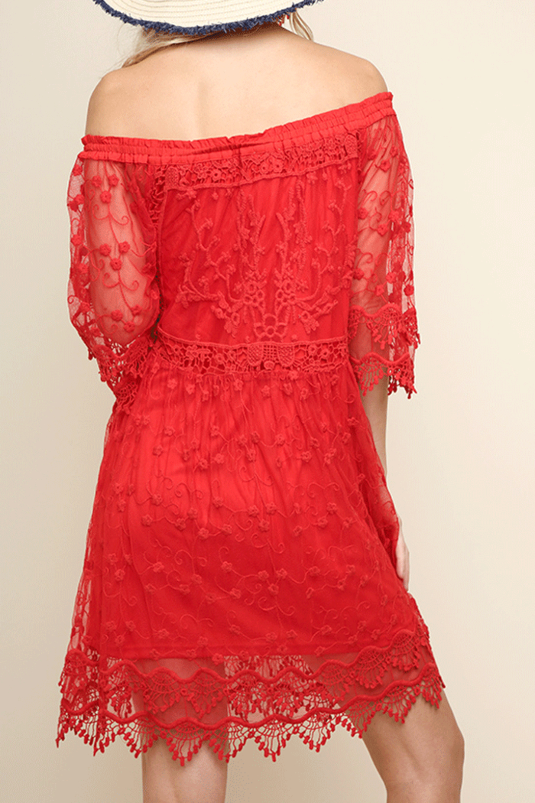 Umgee USA Lace Off Shoulder Dress - Back Cropped Image