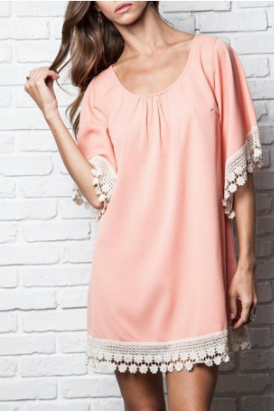 Umgee USA Lace-Trimmed Tunic Dress - Front Cropped Image