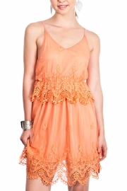Umgee USA Sleeveless Tulle Dress - Product Mini Image