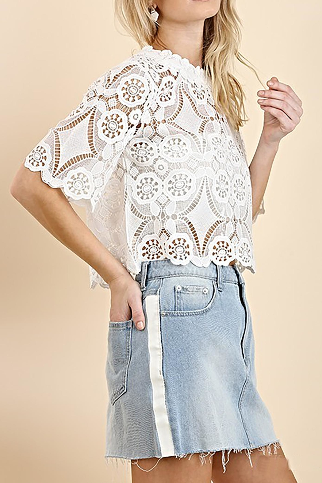 Umgee USA Lace Crop Top - Front Full Image