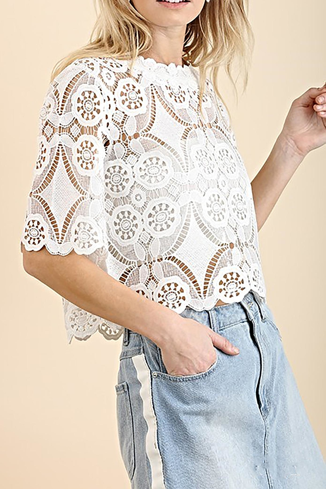 Umgee USA Lace Crop Top - Front Cropped Image