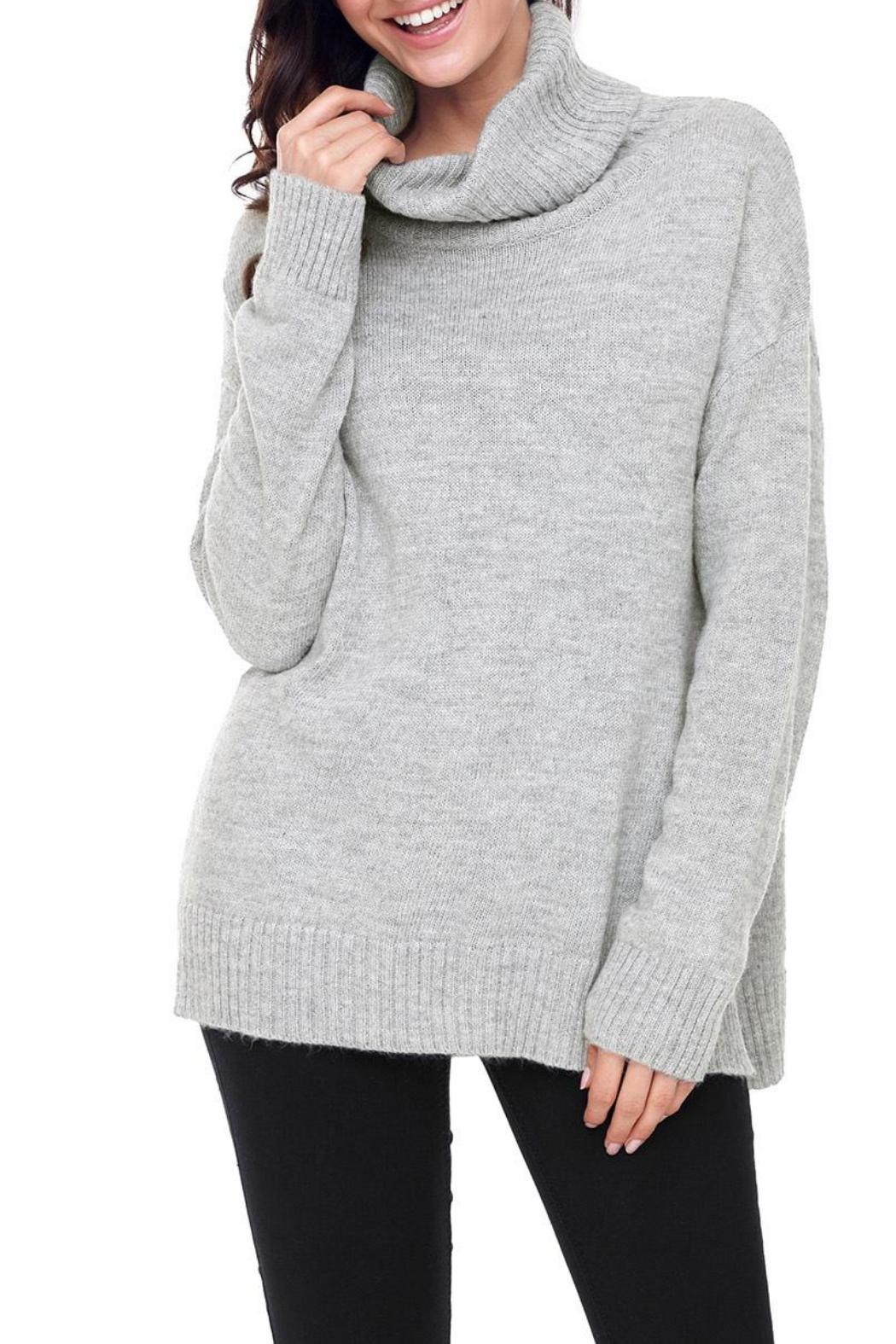 Unbranded Gray Turtleneck Sweater - Front Full Image